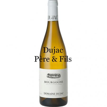 Dujac Père et Fils Bourgogne Blanc 2018