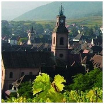 AOC Alsace Grand Cru