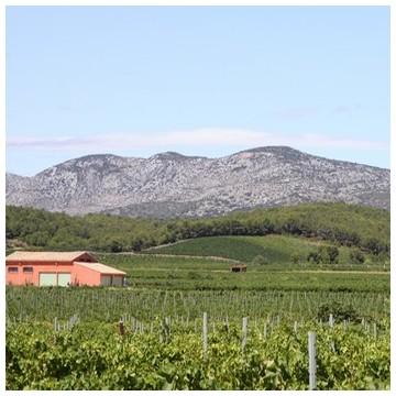 AOC Côtes du Roussillon