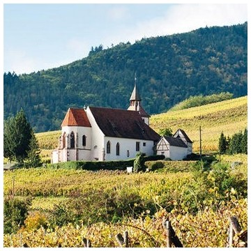 Alsace premier cru