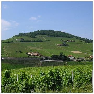 AOC Beaujolais Villages